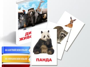 Авторские карточки Домана