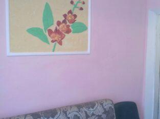 сдам комнату от хозяина в Одессе 100 грн.