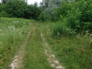 Продам земельный участок 8 сот в с.Белогородка Киево-Святошинского р-на Киевской обл.