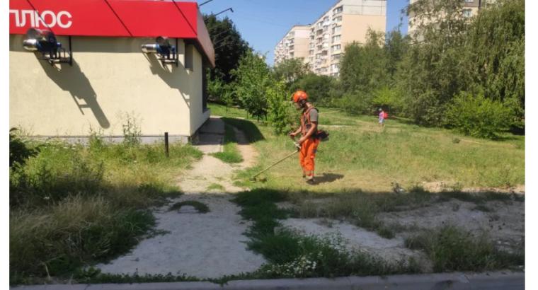 Спил и уборка аварийных деревьев, покос травы в Полтаве