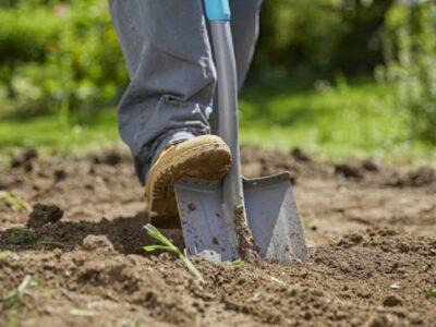Работы в саду, садовник