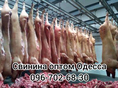 Мясо свинины купить