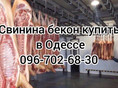 Мясо свинины Одесса доставка