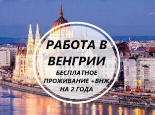 Срочный набор! Везем бесплатно c Украины по био! Работа в Венгрии! 700-950 долларов в меся