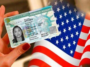 Помощь в оформлении грин карты США